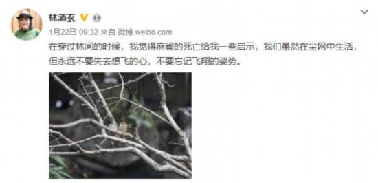 林清玄去世 最后一条微博:永远不要失去想飞的心