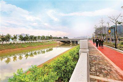 惠城中心区加快推进河涌整治,这是望江沥一角。  本报记者黄俊琦 摄