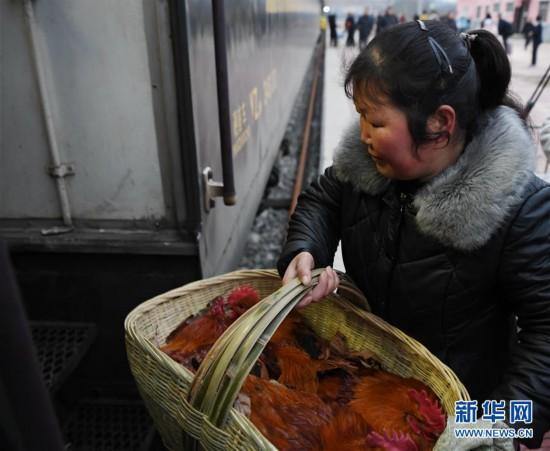 """(新春走基层·图片故事)(5)秦巴山里的""""火车集市"""""""