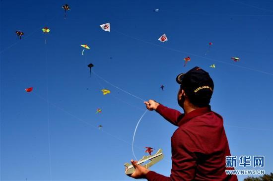 """""""放飞春天的梦想""""风筝节在孟加拉国举办"""