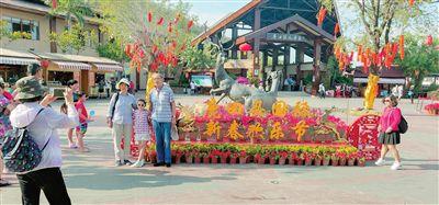 """三亚鹿回头风景区""""旅游大餐""""嗨玩春节黄金周"""