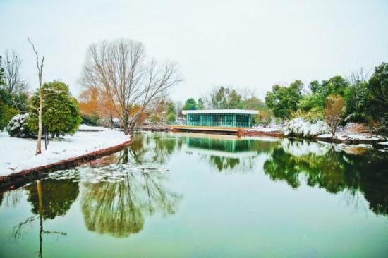 改造后植物园内供游客休息的小亭子。