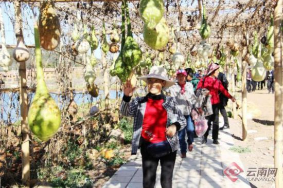 文山普者黑春节期间累计接待20余万游客旅游综合收入同比增长