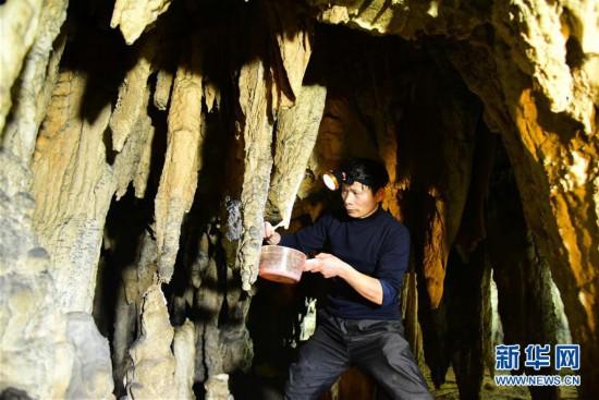 #(社会)(1)钟乳石清洁工