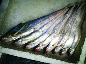 禁捕令出台后 江苏不少商家仍在叫卖长江刀鱼