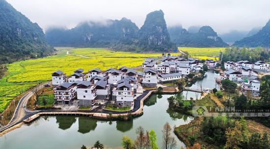 田阳县巴某村积极探索高质量脱贫新路子成效明显