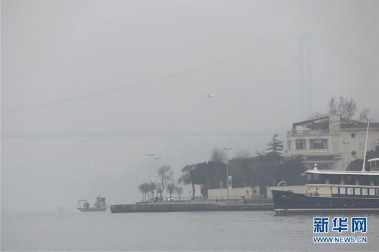 伊斯坦布尔遭遇大雾