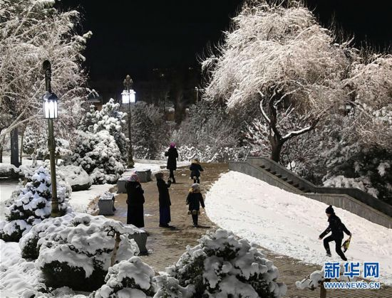 塔什干迎来降雪