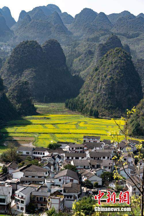贵州兴义万峰林万亩油菜花竞相开放