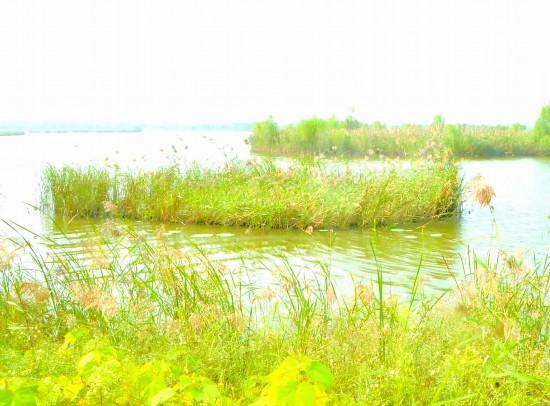 净空净水净土 徐州沛县生态文明建设收获丰硕