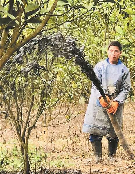 博白县南流江水环境综合整治:截污建池 收运还田