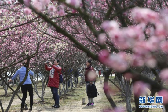 #(社会)(3)春暖花开迎客来