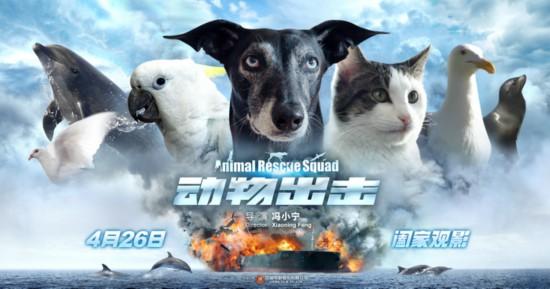 《动物出击》定档4月26日 曝萌宠集结版海报