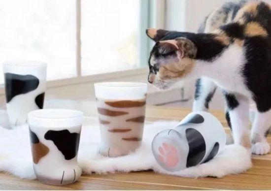 猫爪杯抢不到?你应该看看这些杯子!