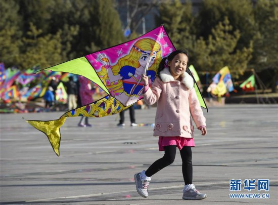 (社会)(2)忙趁春风放纸鸢