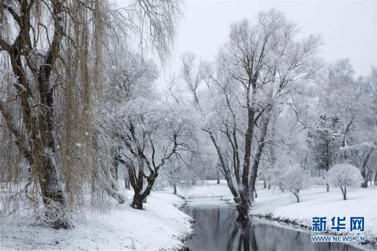 (XHDW)(3)拉脱维亚雪景