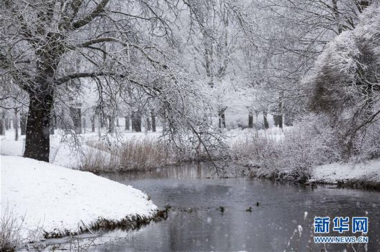 (XHDW)(4)拉脱维亚雪景