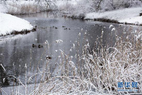 (XHDW)(1)拉脱维亚雪景