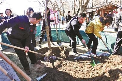 北京玉淵潭公園のサクラが来週にも見頃に