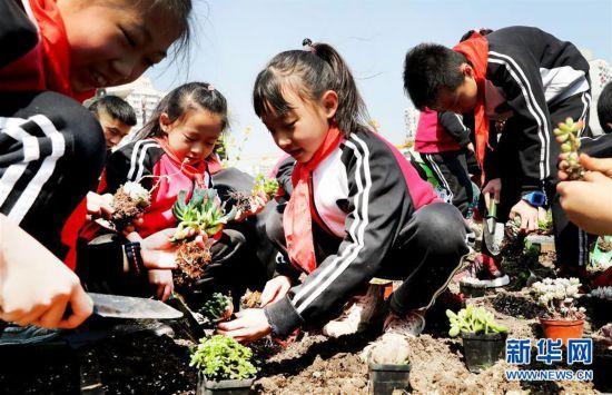 (社会)(1)厨余垃圾变身肥料 屋顶农场种下绿色