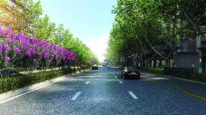南京龙蟠中路至太平门段明起道路综合整治