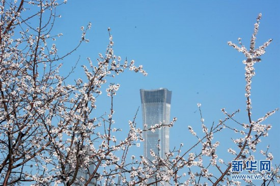 (环境)(3)春暖花渐开
