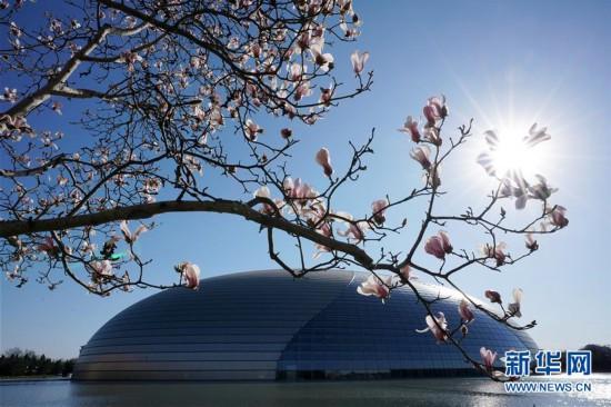 (环境)(1)春暖花渐开