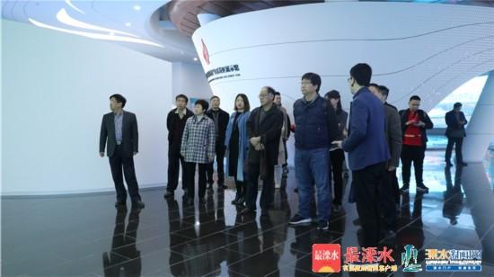 海外专家在南京溧水开展国际项目对接会