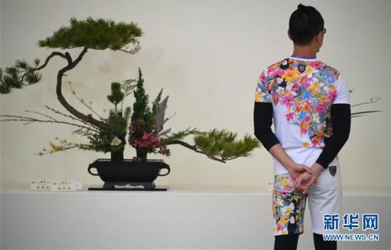 (社会)(4)2019年香港花卉展览即将揭幕