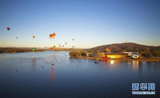 (国际)(3)堪培拉热气球节