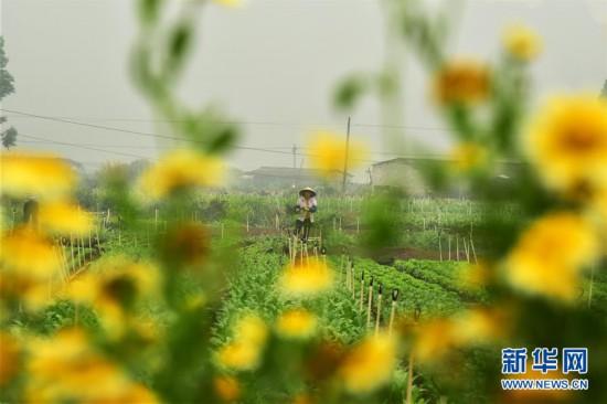 #(经济)(3)正是春暖农忙时