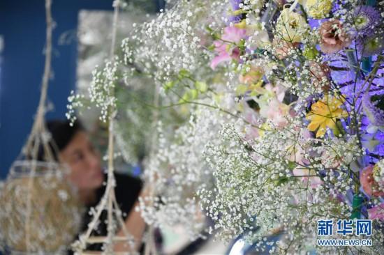 (社会)(3)2019年香港花卉展览即将揭幕