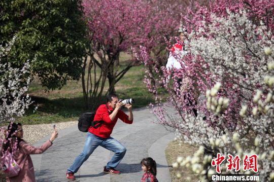 """江苏扬州春日美景醉游人游客变身""""摄影师""""记录春天"""