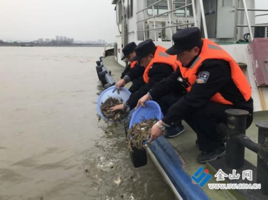 镇江:禁渔期查获非法捕捞 76斤野生江蟹苗被放归长江