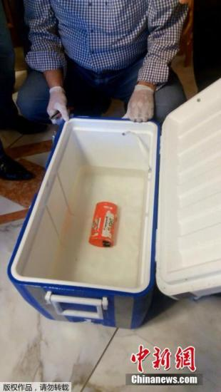 法方称埃航失事客机黑匣子数据已被读取并移交埃方