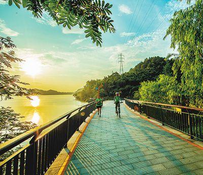 杭州:绿道串起幸福时光