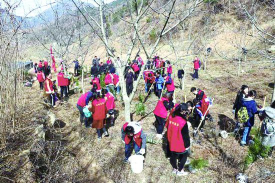 陕西省秦岭生态环保志愿活动在行动