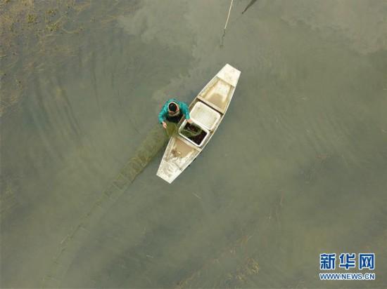 (社會)(2)春日起蝦忙
