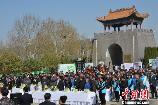 12年间郑州1500位逝者实现公益树葬