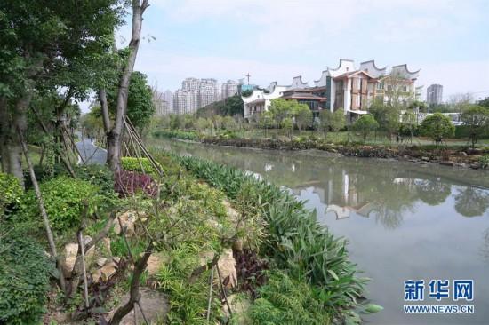 (城市绿道建设・图文互动)(10)榕城绿意今更浓――福州推进城市绿道建设让民众畅享山水之美