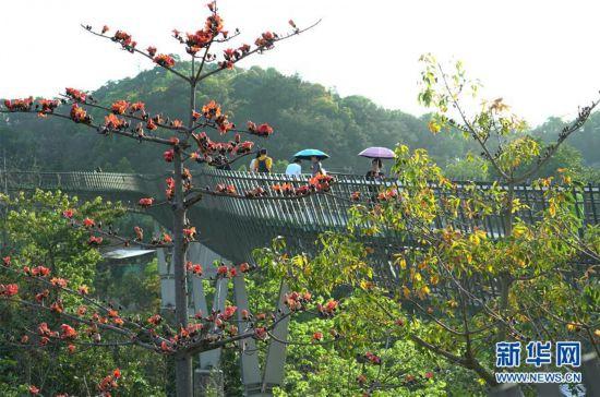 (城市绿道建设・图文互动)(3)榕城绿意今更浓――福州推进城市绿道建设让民众畅享山水之美
