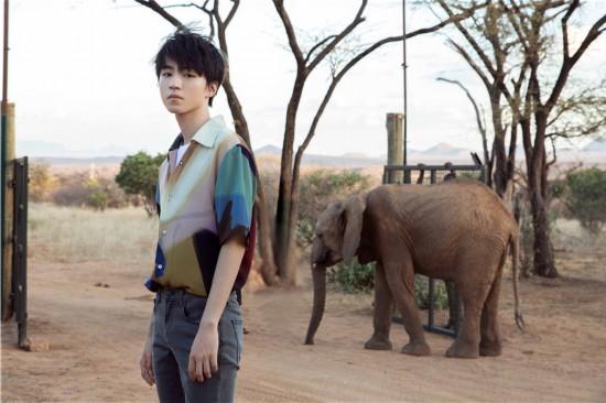 王俊凯肯尼亚写真与动物互动少年感十足