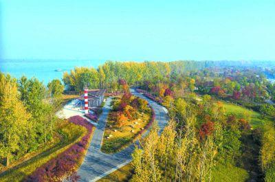 满眼春色入画来 南京江心洲绿化覆盖率达70%