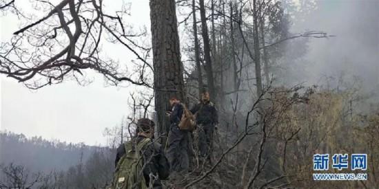 四川木里森林火灾起火原因确定为雷击火
