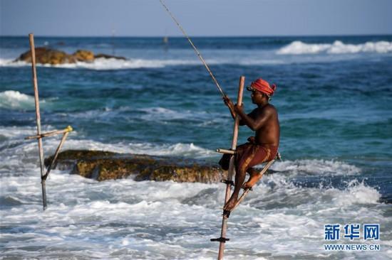 斯里兰卡:高跷海钓人