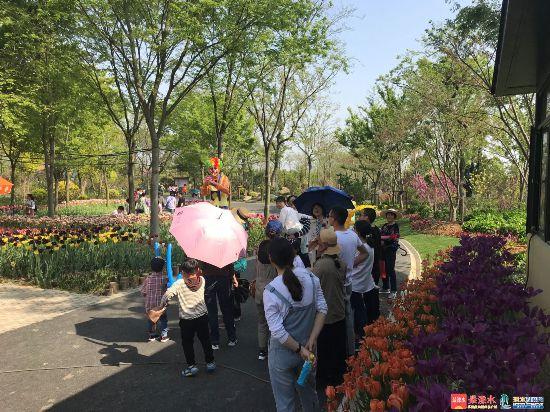 溧水掀开今年旅游旺季序幕 (2).jpg