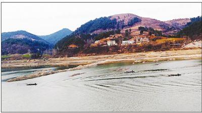 禁渔期汉江郧西县坪沟村河段有人非法捕捞