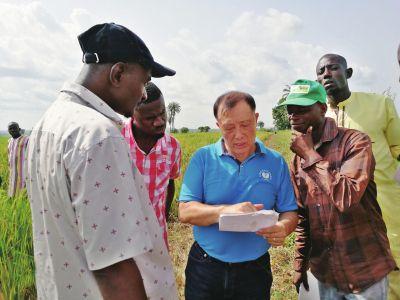 绿色超级稻项目惠及