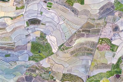 廣州從化:春色阡陌 綠水人家