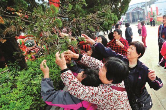 惠州:舞麒麟摘柏叶祈愿风调雨顺